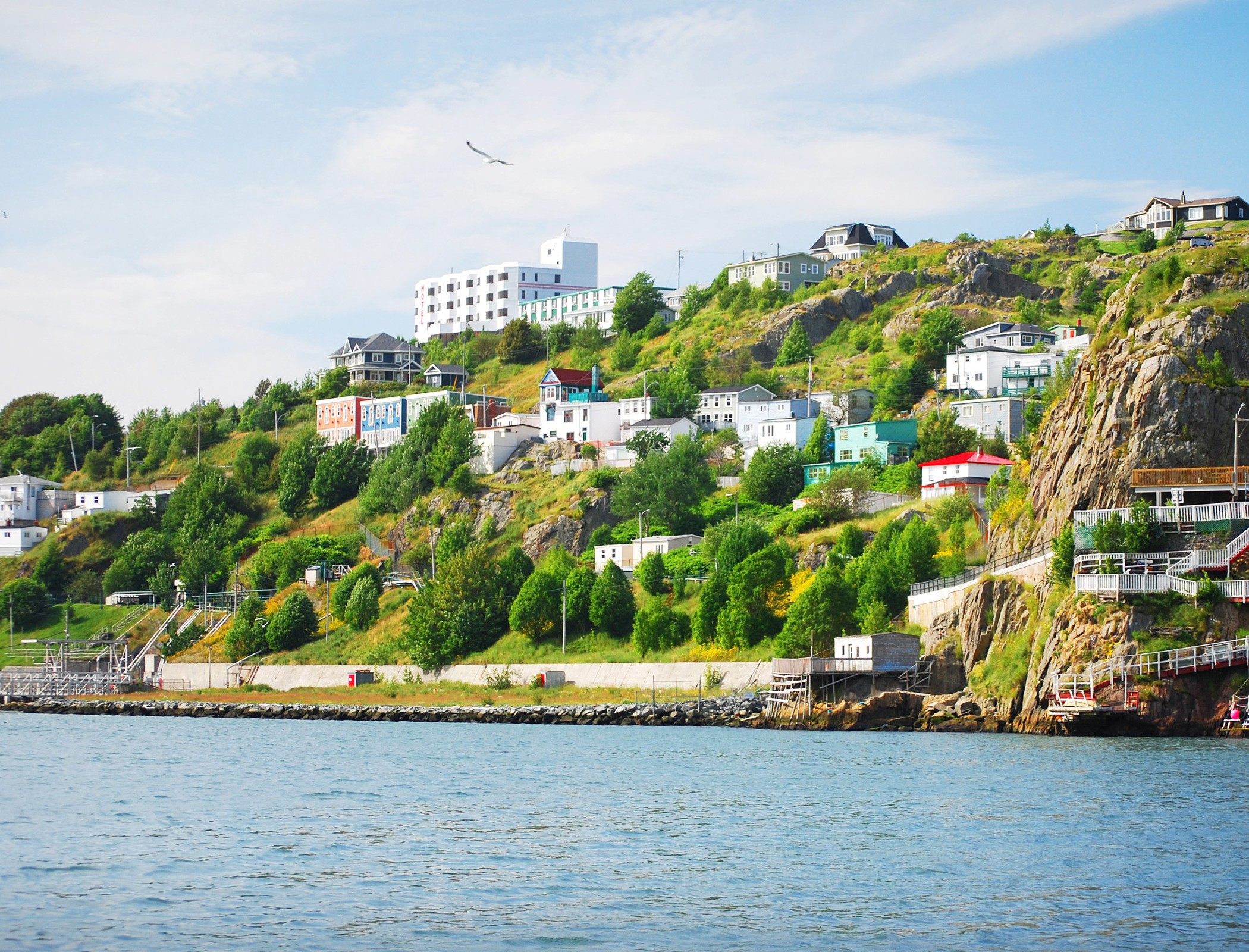 an overlooking shot of st. john's houses from the water's edge